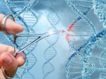 La tecnica di editing CRISPR sfida seriamente il Cancro