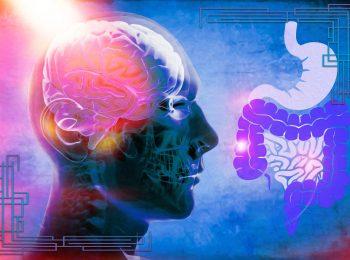La correlazione tra microbioma e Parkinson
