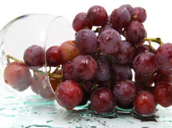 Resveratrolo: tutte le proprietà dell'antiossidante del vino
