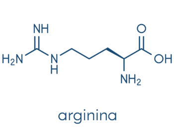 Arginina: tutto ciò che devi sapere!