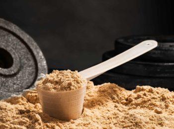 Proteine in polvere: quali sono le migliori?