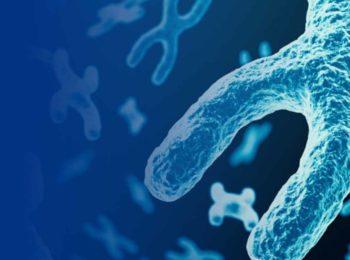 Aneuploidia: una nuova strategia contro i tumori?