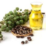 Olio di ricino: usi e proprietà