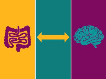 Psicobiotici: la felicità che parte dall'intestino