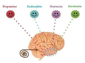 Gli ormoni della felicità